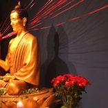Lotus Hall Buddha Detail